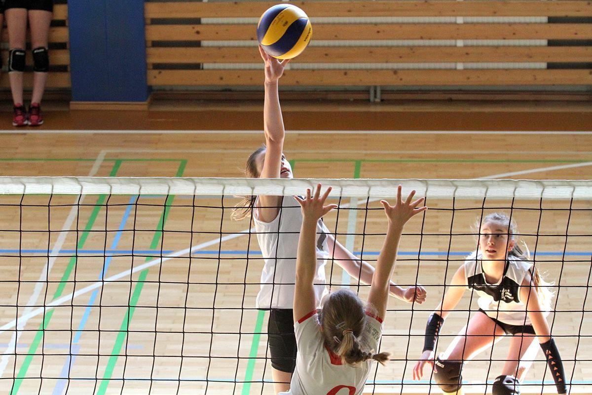 ŽOK Kema Puconci, Calcit Volley